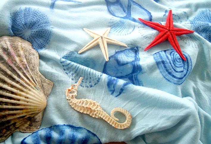 Malovani Na Textil Hobbykohout Cz